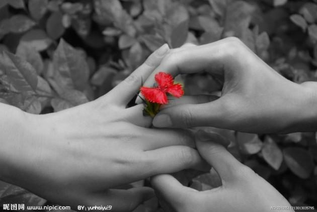 20111229195225_khmaK.thumb.700_0